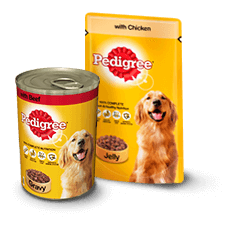 When Can You Feed A Puppy Regular Dog Food
